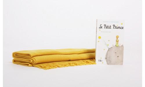 Echarpe Le Petit Prince